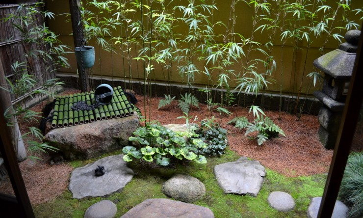 Backyard Japanese Garden (10)