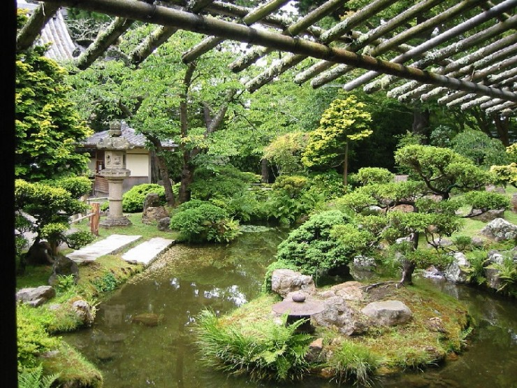 Backyard Japanese Garden (23)