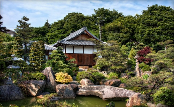 Backyard Japanese Garden (25)