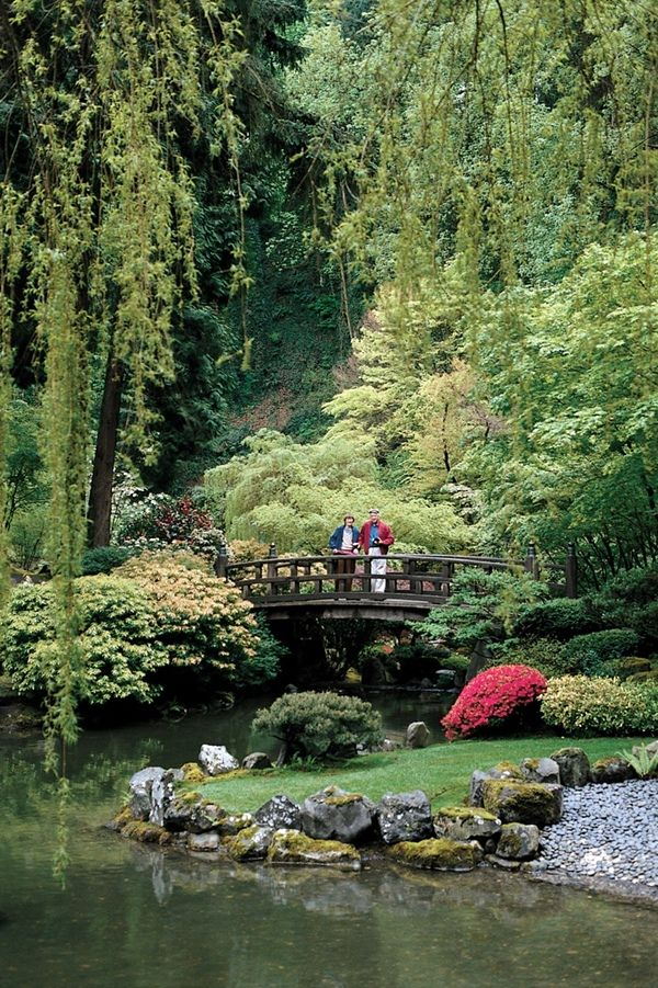 Backyard Japanese Garden (3)