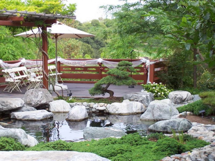 Backyard Japanese Garden (30)