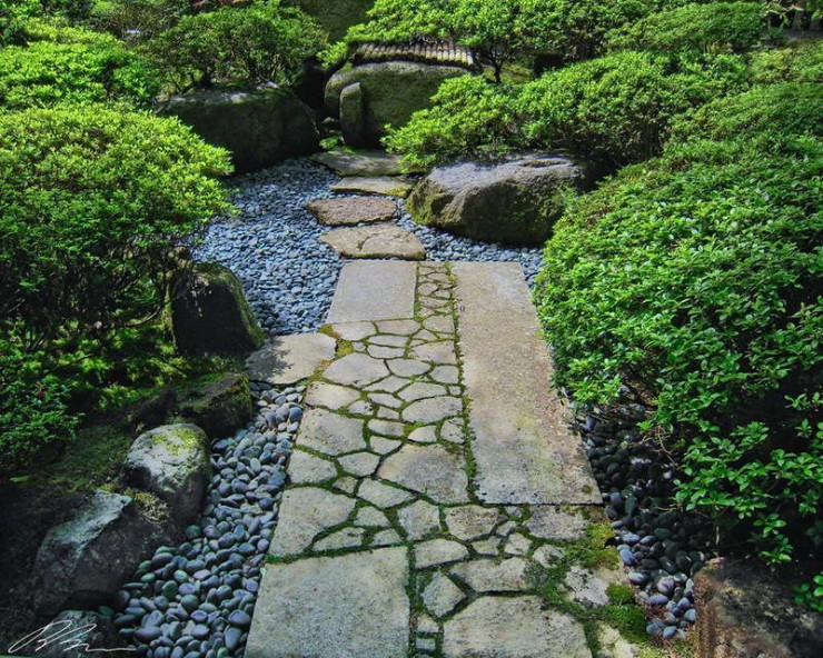 Backyard Japanese Garden (33)