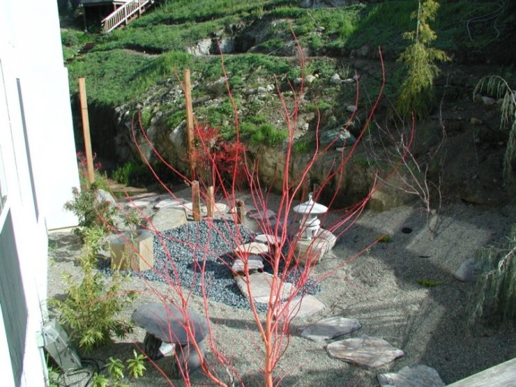 Backyard Japanese Garden (6)