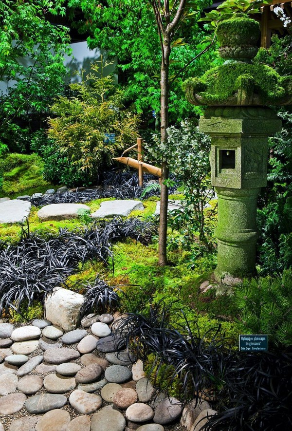 Create Your Own Japanese Garden (28)