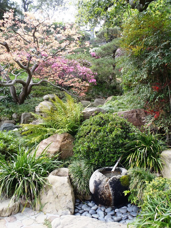 Create Your Own Japanese Garden (30)