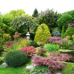 Creating Your Own Japanese Garden (1)