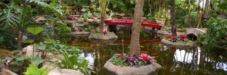 Creating Your Own Japanese Garden (10)