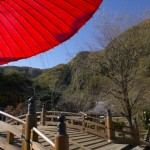 Creating Your Own Japanese Garden (12)