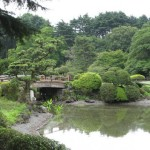 Creating Your Own Japanese Garden (14)