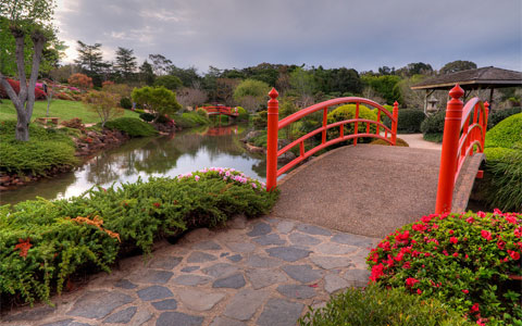 Creating Your Own Japanese Garden (19)