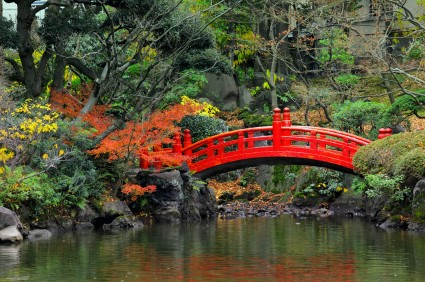 Designing Your Own Japanese Garden (1)