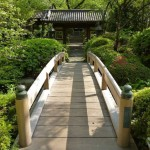 Japanese Garden Bridge (1)