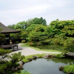 Japanese Garden Bridge (11)