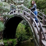Japanese Garden Bridge (18)