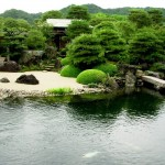 Japanese Garden Bridge (2)