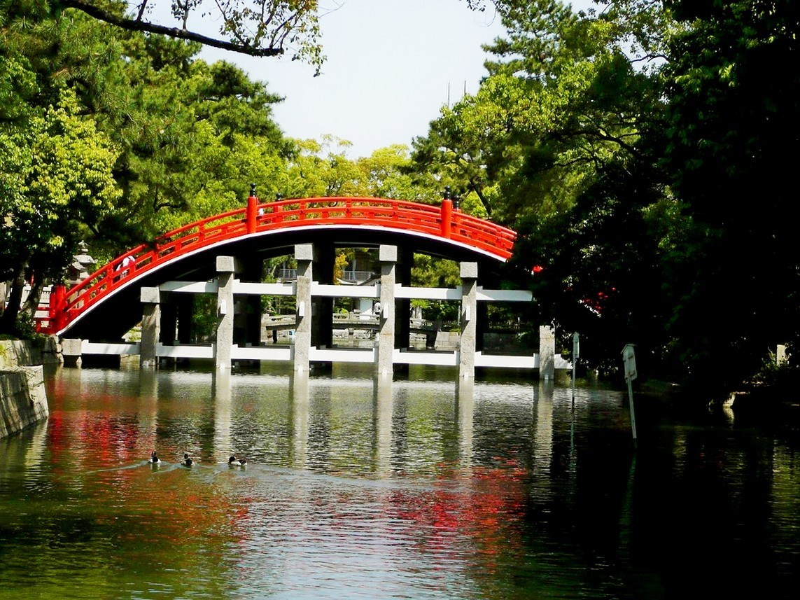 Japanese Garden Bridge (20)
