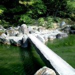 Japanese Garden Bridge (22)