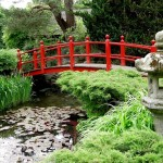 Japanese Garden Bridge (23)