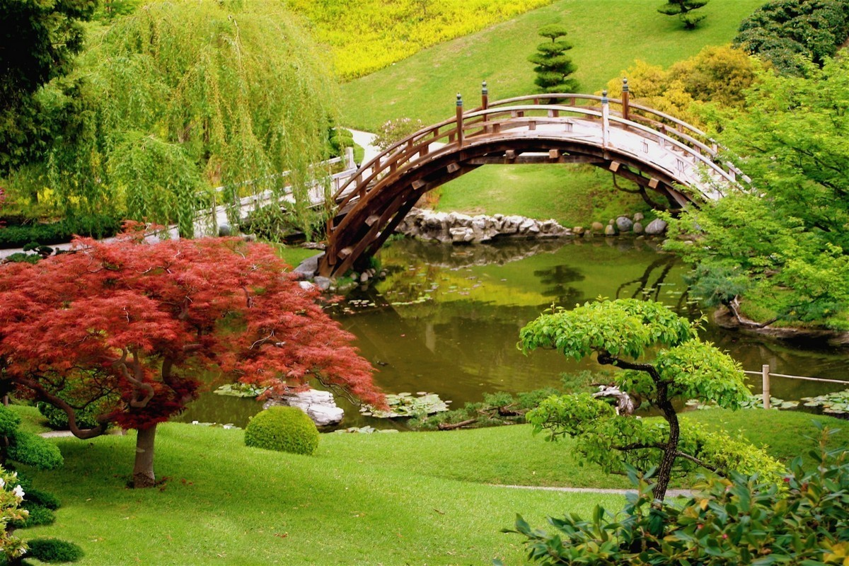 Japanese Garden Bridge (26)