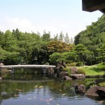 Japanese Garden Bridge (28)