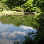 Japanese Garden Bridge (3)