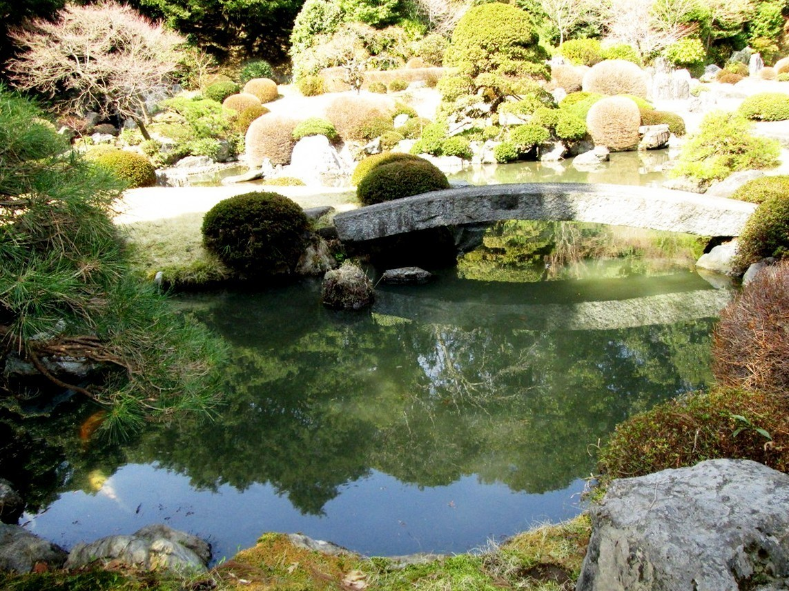 Japanese Garden Bridge (33)