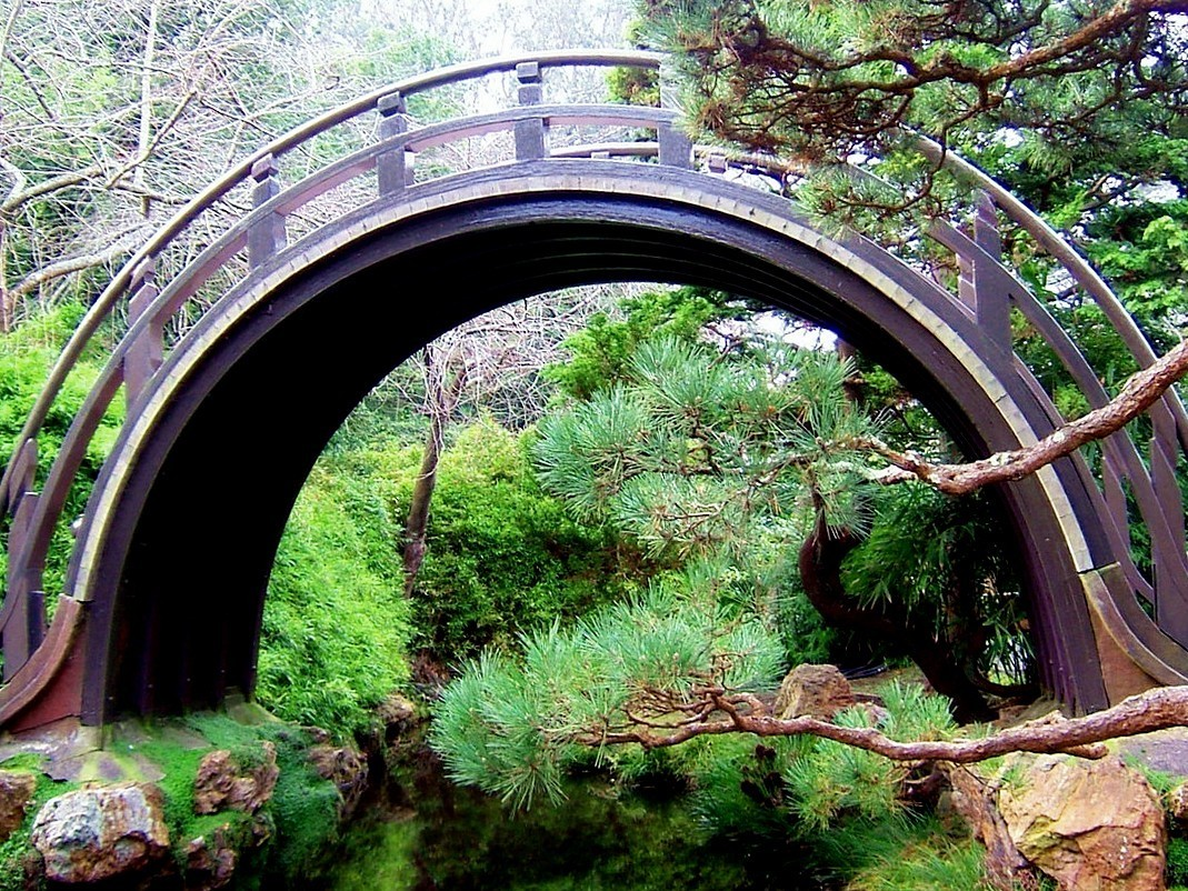 Japanese Garden Bridge (35)