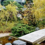 Japanese Garden Bridge (36)