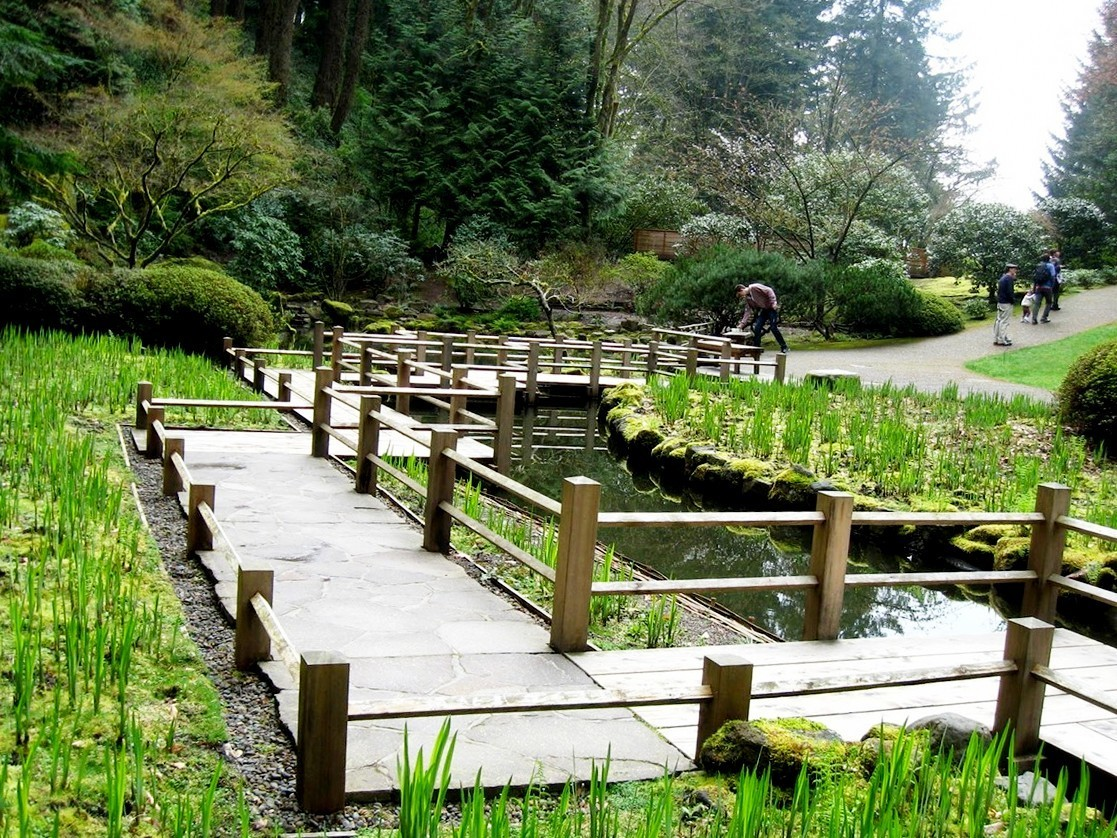 Japanese Garden Bridge (40)