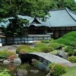 Japanese Garden Bridge (43)
