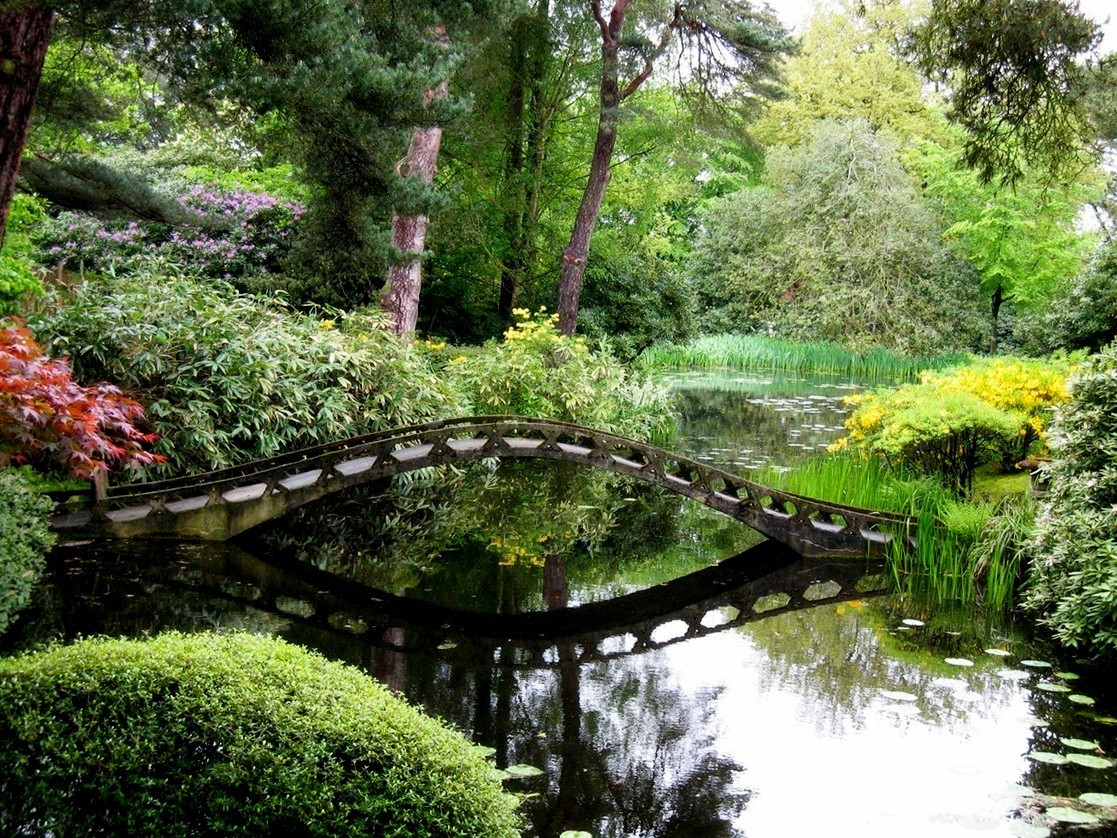 Japanese Garden Bridge (45)