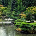 Japanese Garden Bridge (46)
