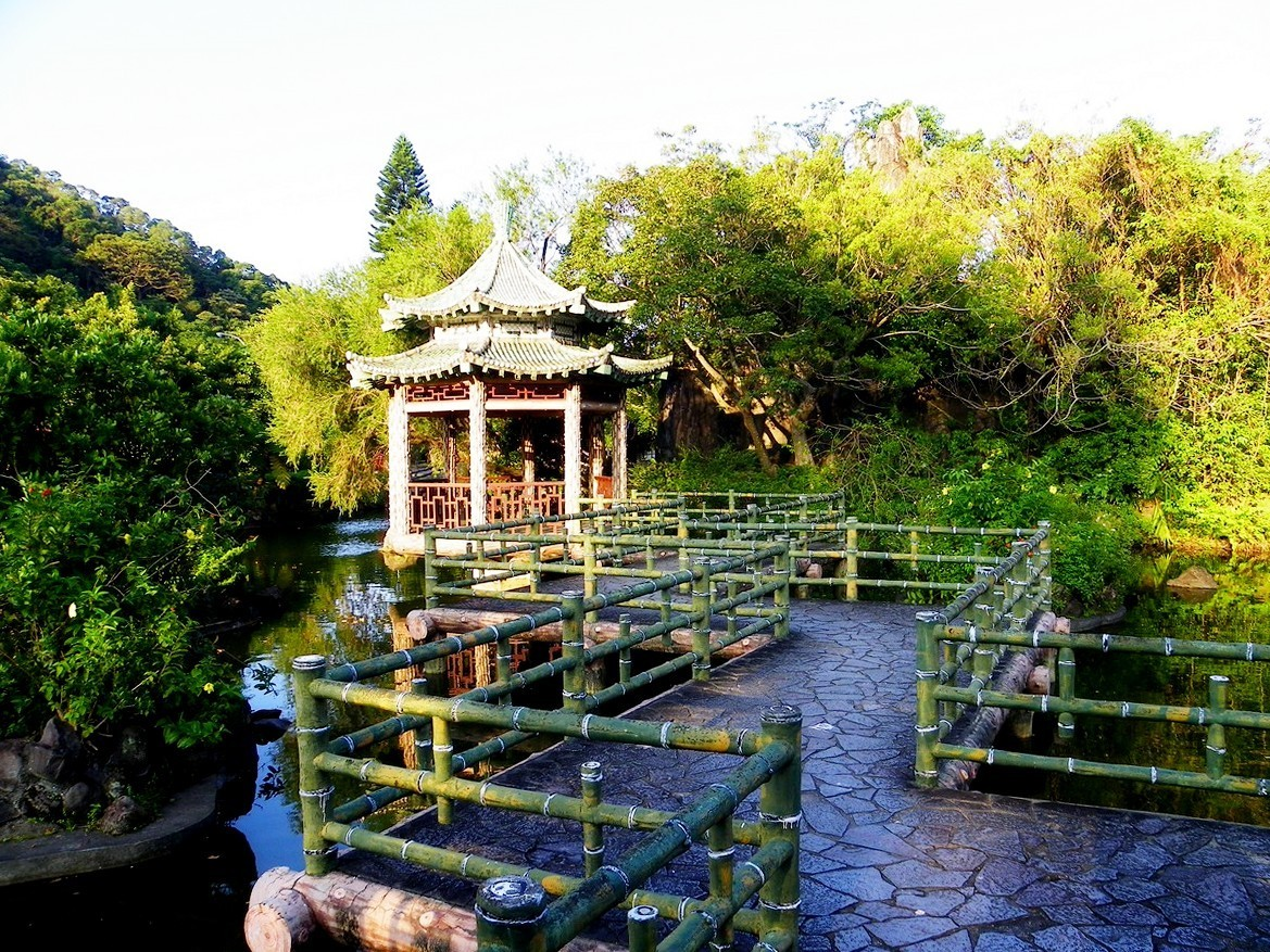 Japanese Garden Bridge (49)