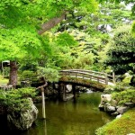 Japanese Garden Bridge (53)