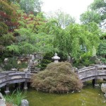 Japanese Garden Bridge (54)