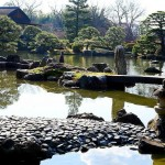 Japanese Garden Bridge (55)