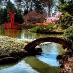 Japanese Garden Bridge (59