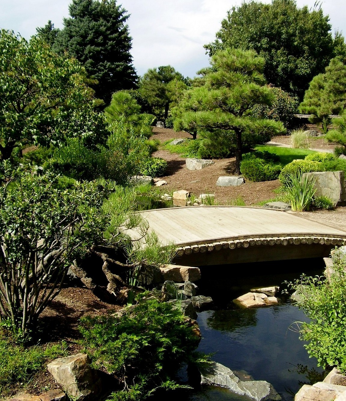 Japanese Garden Bridge (64)
