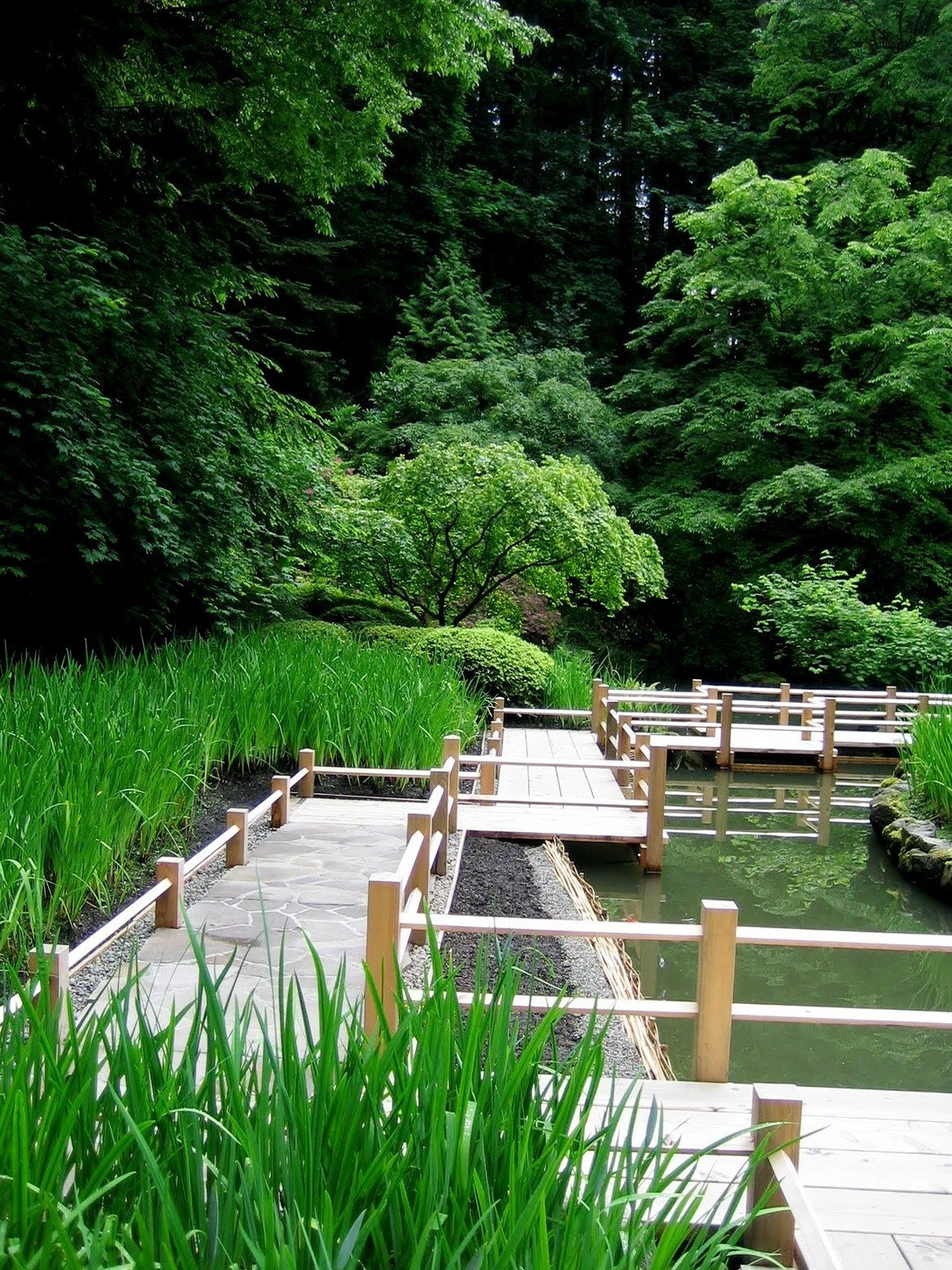 Japanese Garden Bridge (65)