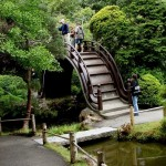 Japanese Garden Bridge (7)