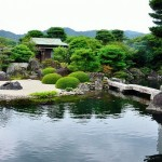 Japanese Garden Bridge (8)