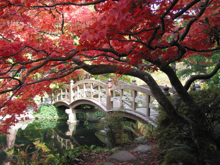 Japanese Garden Design Ideas (21)