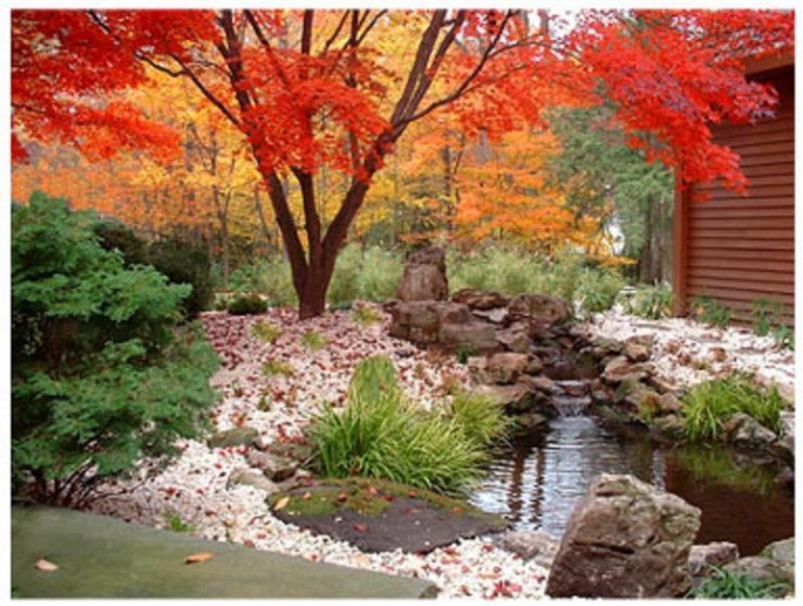 Japanese Garden Design Ideas (6)