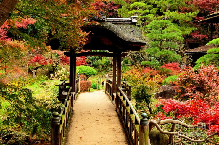 Japanese Garden Ornaments (28)