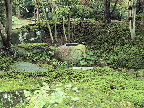 Japanese Garden Water Basins (22)