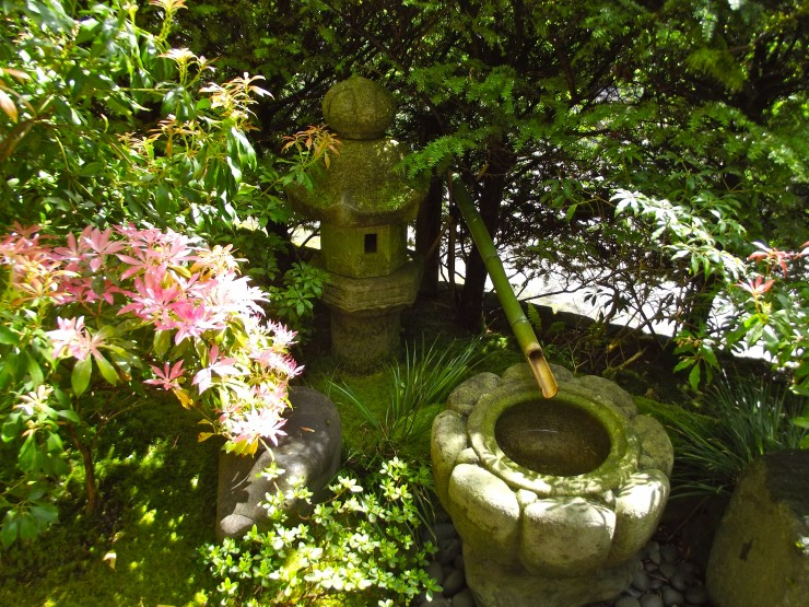 Japanese Garden Water Basins (30)