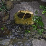Japanese Garden Water Basins (33)