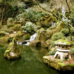 Japanese Garden Waterfall (1)