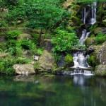 Japanese Garden Waterfall (12)