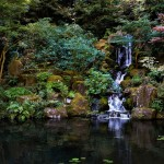 Japanese Garden Waterfall (13)